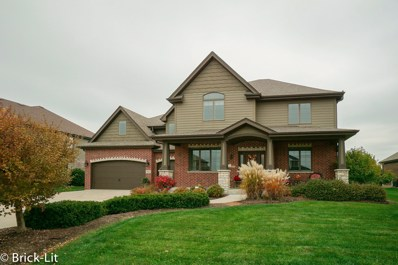 2066 Water Chase Drive, New Lenox, IL 60451 - #: 10608828