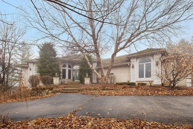 6 PARTRIDGE Lane, Palos Park, IL 60464 - #: 10609668