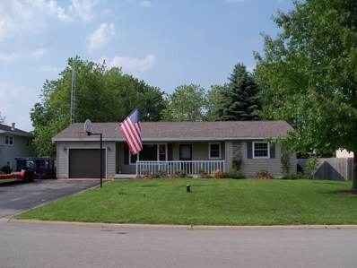 24332 S Valley Drive, Channahon, IL 60410 - #: 10609738
