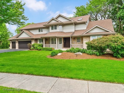 6801 Caitlin Court, Willowbrook, IL 60527 - #: 10610227
