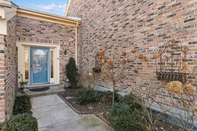 39 The Court Of Cobblestone, Northbrook, IL 60062 - #: 10610264