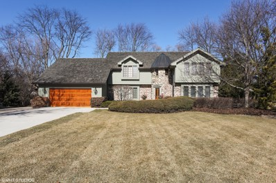 828 INTERLAKEN Lane, Libertyville, IL 60048 - #: 10610513