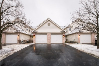 1745 Nature Court, Schaumburg, IL 60193 - #: 10610554