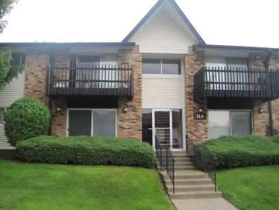 11A Kingery Quarter   Unit 204 UNIT 204, Willowbrook, IL 60527 - #: 10610738