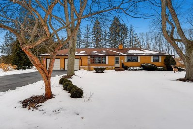 1214 Forest Drive, Elgin, IL 60123 - #: 10610852