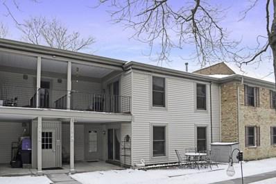 1704 Fayette Walk UNIT B, Hoffman Estates, IL 60169 - #: 10611822