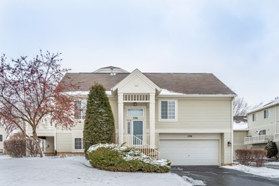 356 NEW HAVEN Drive, Cary, IL 60013 - #: 10611826