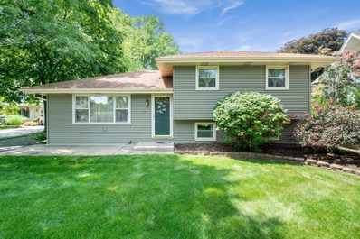 6044 Boundary Road, Downers Grove, IL 60516 - #: 10612223