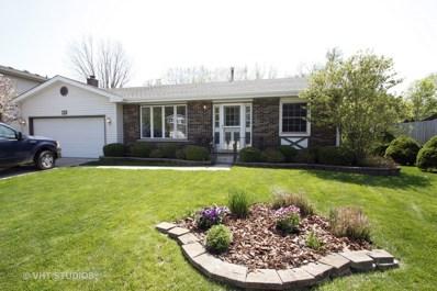 5205 W Springdale Lane, McHenry, IL 60050 - #: 10612419