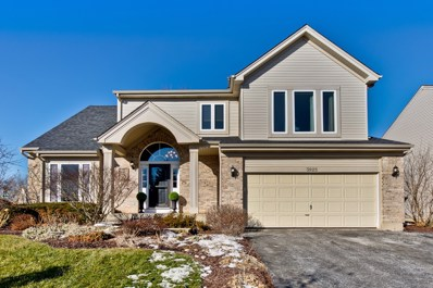 3925 Blackberry Drive, Lake In The Hills, IL 60156 - #: 10613037