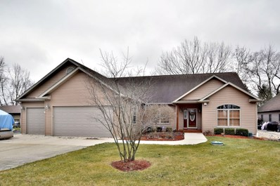 8675 East Pheasant Trail, Wilmington, IL 60481 - #: 10614304