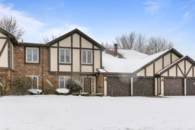 639 Big Timber Drive UNIT D, Joliet, IL 60431 - #: 10615877