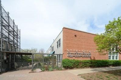 1300 W Altgeld Street UNIT 117, Chicago, IL 60614 - #: 10615948