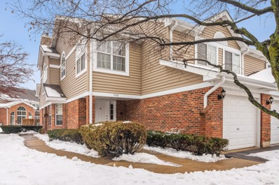 908 W Happfield Drive UNIT 908, Arlington Heights, IL 60004 - #: 10616103