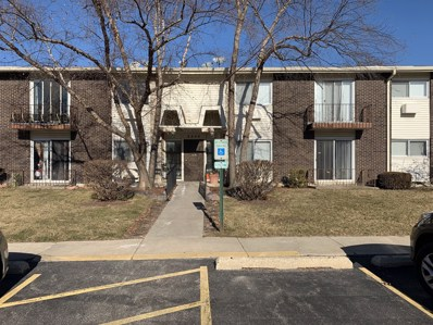 8848 KENNETH Drive UNIT 2H, Des Plaines, IL 60016 - #: 10616529