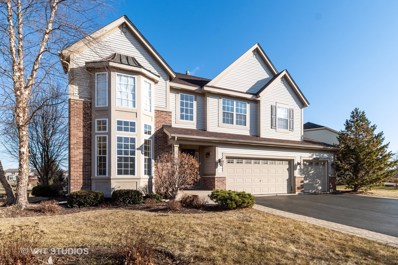 26224 Whispering Woods Circle, Plainfield, IL 60585 - #: 10617133