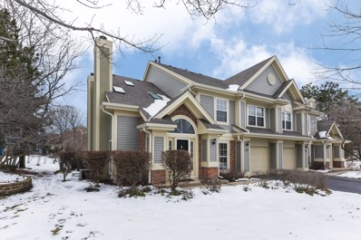 1284 Old Mill Lane, Elk Grove Village, IL 60007 - #: 10617587