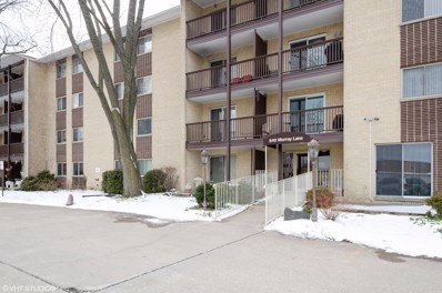 640 Murray Lane UNIT 202, Des Plaines, IL 60016 - #: 10618623