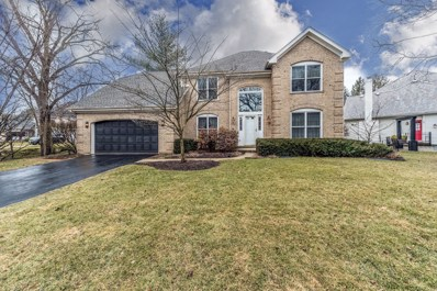 56 Rock River Court, Naperville, IL 60565 - #: 10621043