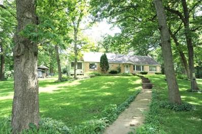 1121 River Terrace Drive, Johnsburg, IL 60051 - #: 10621486