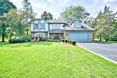 23252 N High Ridge Road, Barrington, IL 60010 - #: 10622660