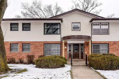 214 Washington Square UNIT C, Elk Grove Village, IL 60007 - #: 10623367