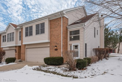201 Tosca Drive, Wood Dale, IL 60191 - #: 10623671