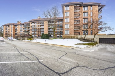 3801 Mission Hills Road UNIT E309, Northbrook, IL 60062 - #: 10623790