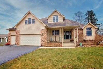 202 Country Club Drive, McHenry, IL 60050 - #: 10624604
