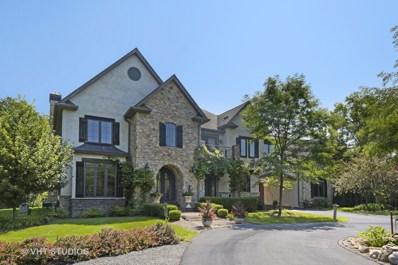 950 Benson Lane, Libertyville, IL 60048 - #: 10628199