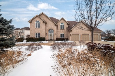 1442 Frenchmans Bend Drive, Naperville, IL 60564 - #: 10628620