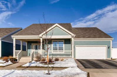 332 Snow Drop Lane, Elgin, IL 60124 - #: 10629202