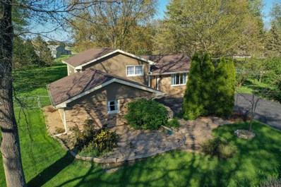 10341 Brenner Court, Naperville, IL 60564 - #: 10629277