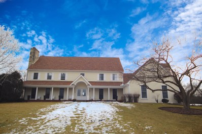 4N105 LAKE ELEANOR Court, Wayne, IL 60184 - #: 10630629