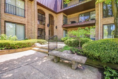 2 Court of Harborside UNIT 101, Northbrook, IL 60062 - #: 10633839