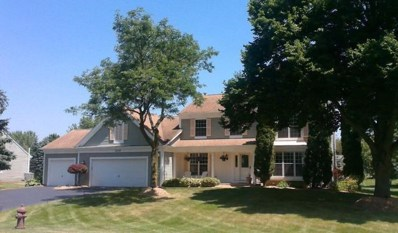 509 Belmont Parkway, Sleepy Hollow, IL 60118 - #: 10634996