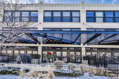 1151 W 15th Street UNIT 135, Chicago, IL 60608 - #: 10635759