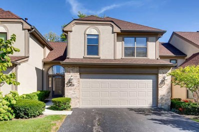 141 Chatsworth Circle, Schaumburg, IL 60194 - #: 10636818