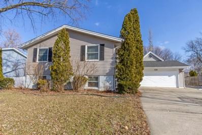425 S BRAINTREE Drive, Schaumburg, IL 60193 - #: 10636952