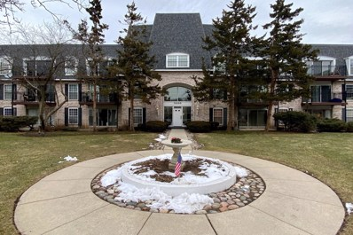 5200 Carriageway Drive UNIT 205, Rolling Meadows, IL 60008 - #: 10637428