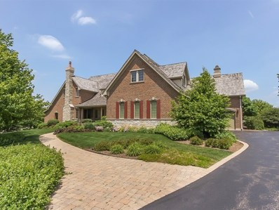 1400 W Longwood Drive, Bull Valley, IL 60098 - #: 10637897