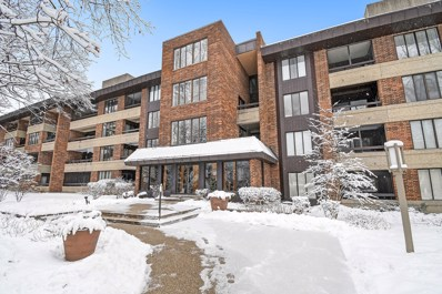 1401 Burr Oak Road UNIT 317B, Hinsdale, IL 60521 - #: 10637906