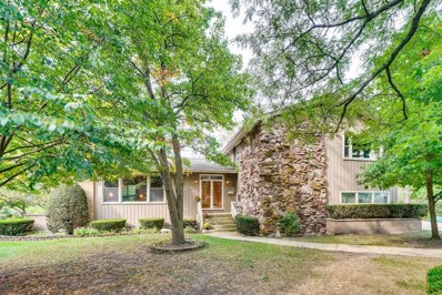1032 62nd Court, Downers Grove, IL 60516 - #: 10638009