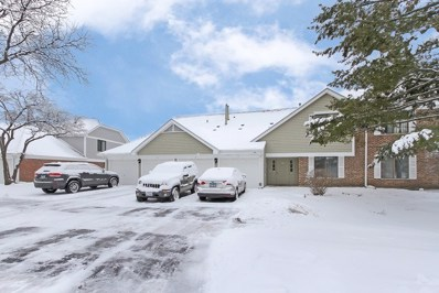 951 Yosemite Trail UNIT B, Roselle, IL 60172 - #: 10638205