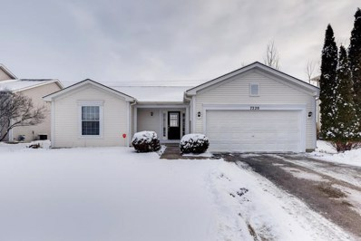 7220 Courtwright Drive, Plainfield, IL 60586 - #: 10638210