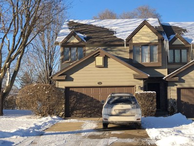 724 Strom Drive UNIT 0, West Dundee, IL 60118 - #: 10638292