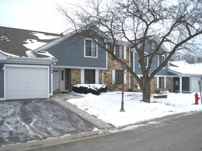 349 Sandalwood Lane UNIT B1, Schaumburg, IL 60193 - #: 10638459
