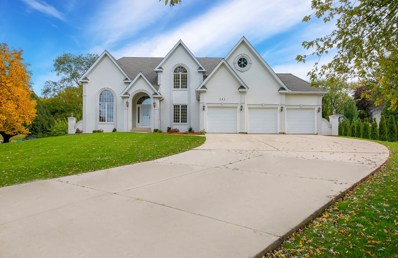 243 Eagle Court, Bloomingdale, IL 60108 - #: 10638698