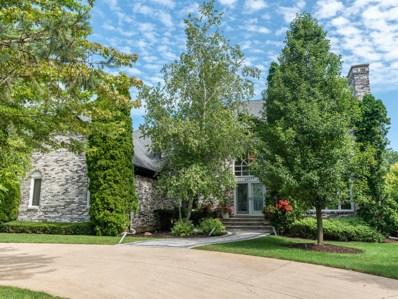 22236 Thornridge Drive, Kildeer, IL 60047 - MLS#: 10639758