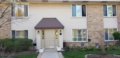 1400 Volid Drive UNIT D, Hoffman Estates, IL 60169 - #: 10641348